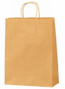 ecological bag-business gift